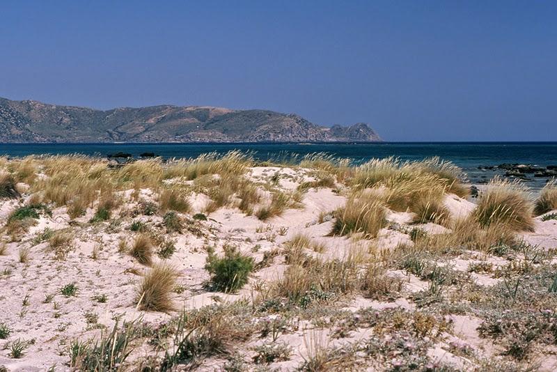 Plage d'Elafonisi (Crète, Grèce)