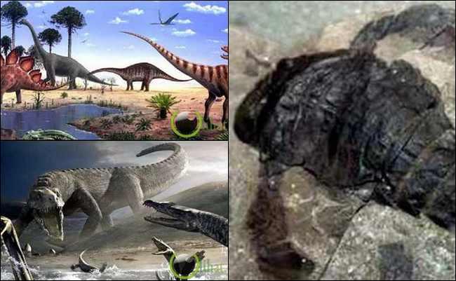 10 Kemusnahan Besar yang pernah Terjadi di Planet Bumi