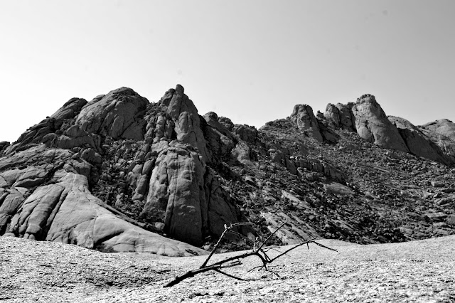 Black and white picture of mountains and twig
