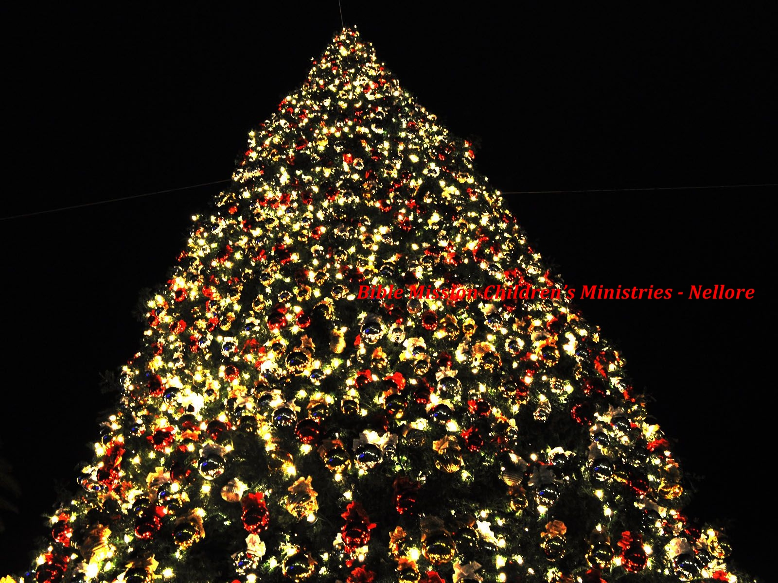 Bible mission children 39 s ministries nellore christmas for Christmas tree with large bulbs