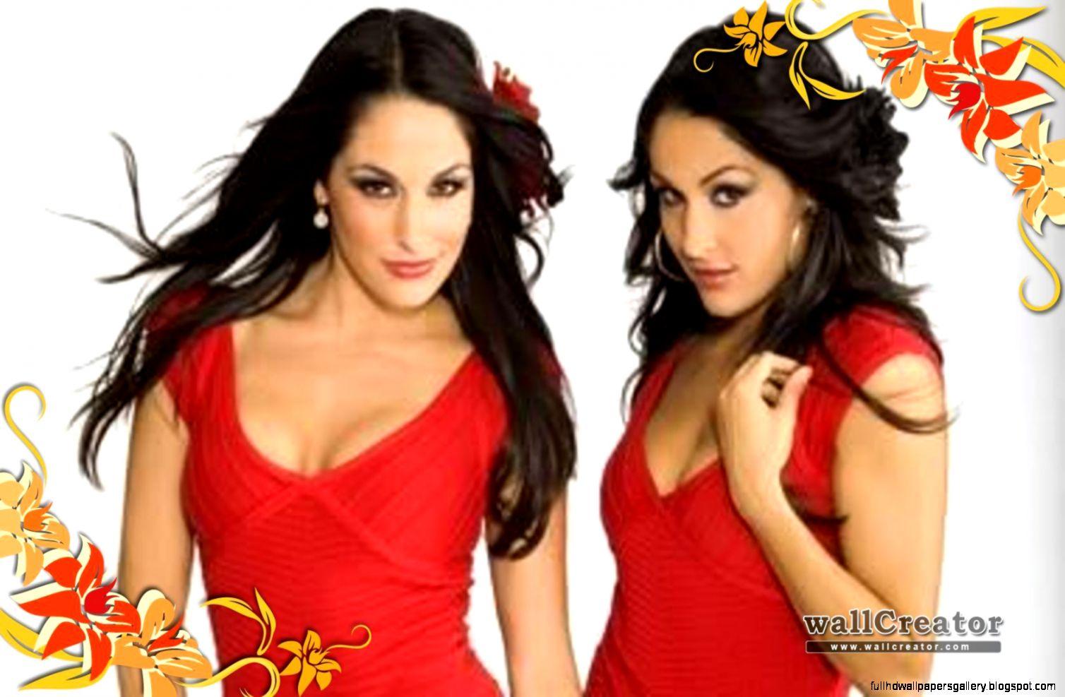 wwe bella twins wallpapers full hd wallpapers