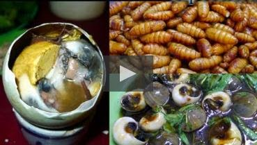 Bizarre Food in Vietnam