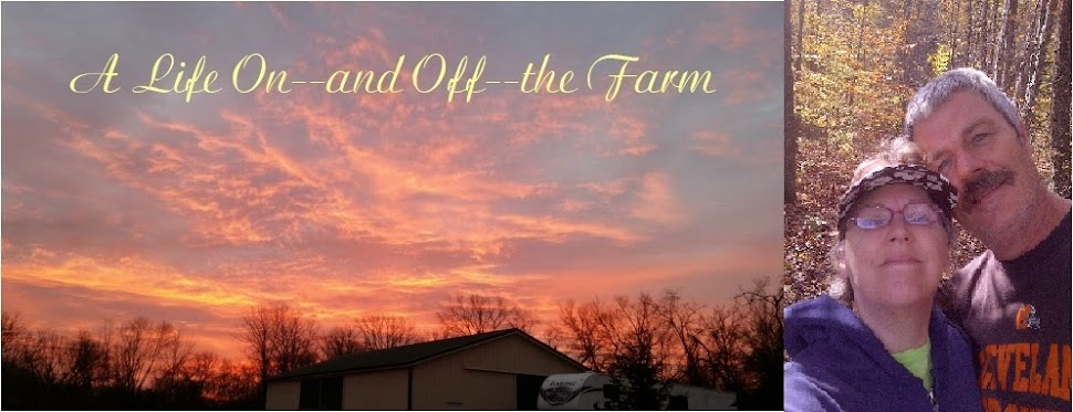 A Life On--and After--the Farm