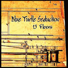 Blue Turtle Seduction: 13 Floors