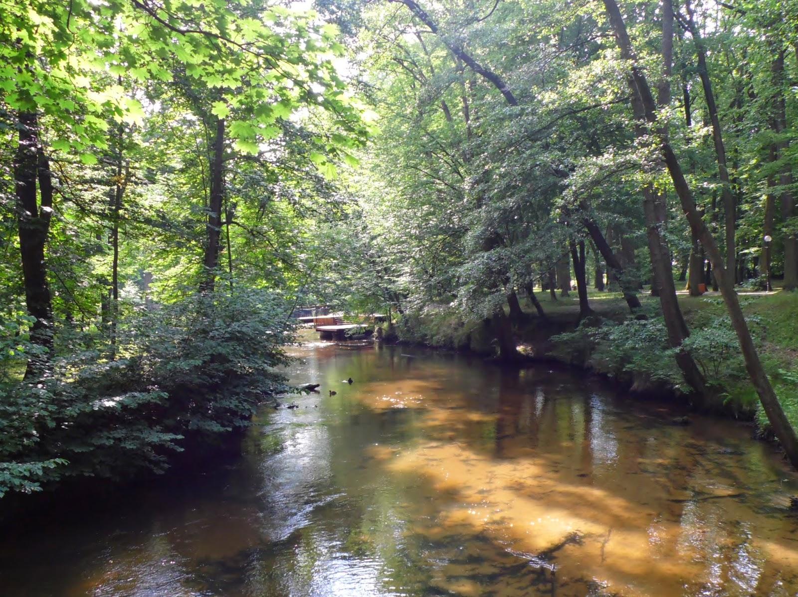Rzeka Wieprz przepływająca przez park w Zwierzyńcu