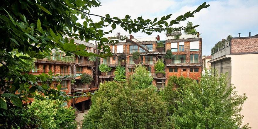 樹保護其居民免受噪音和空氣污染 - 亮麗 - 亮麗的博客