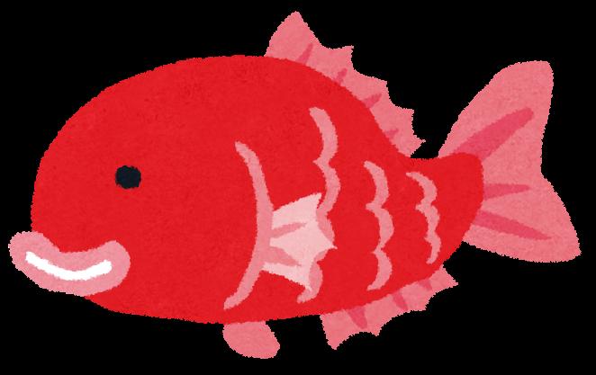 魚のイラスト「タイ」