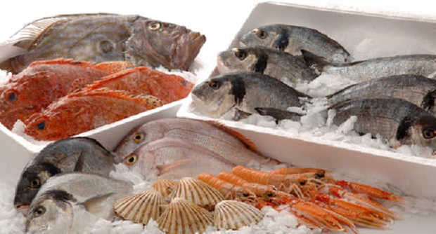 Alimentazione e benessere freschi o surgelati quali for Quanto vive un pesce rosso