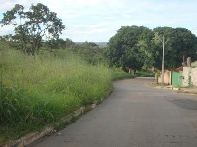 Polícia prende dois suspeitos de invadir 2 hectares no Morro Azul
