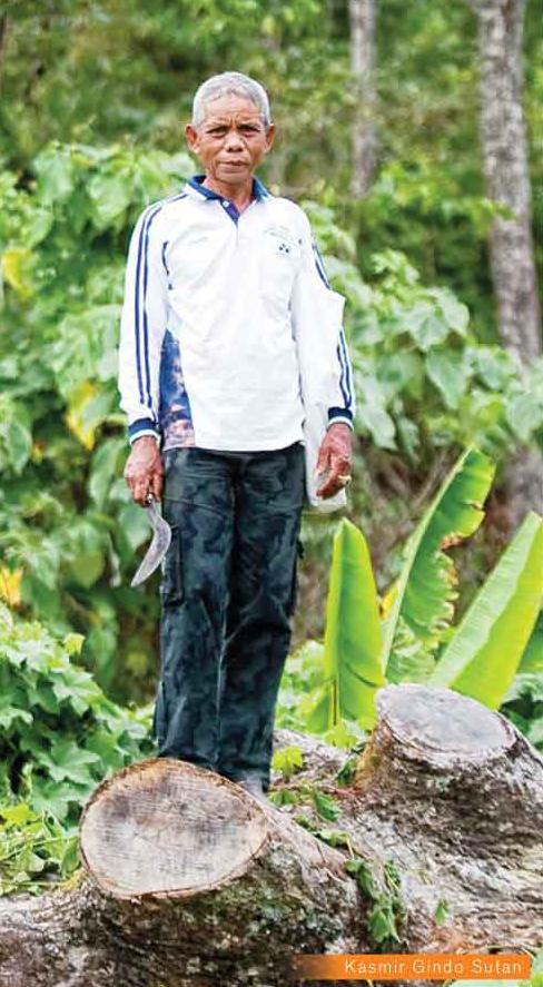 kasmir penyelamat hutan di sumatra barat