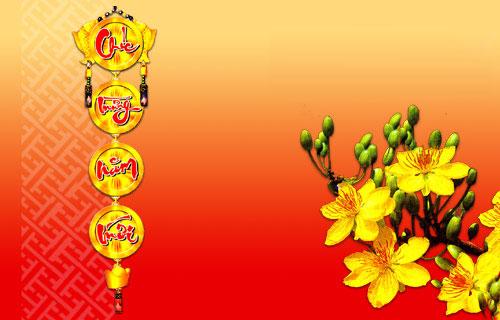 Hình ảnh hoa mai ngày tết