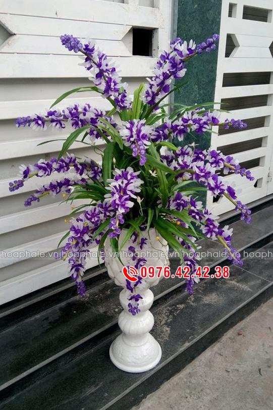 Hoa lan ngọc điểm trắng tím - Hoa pha lê