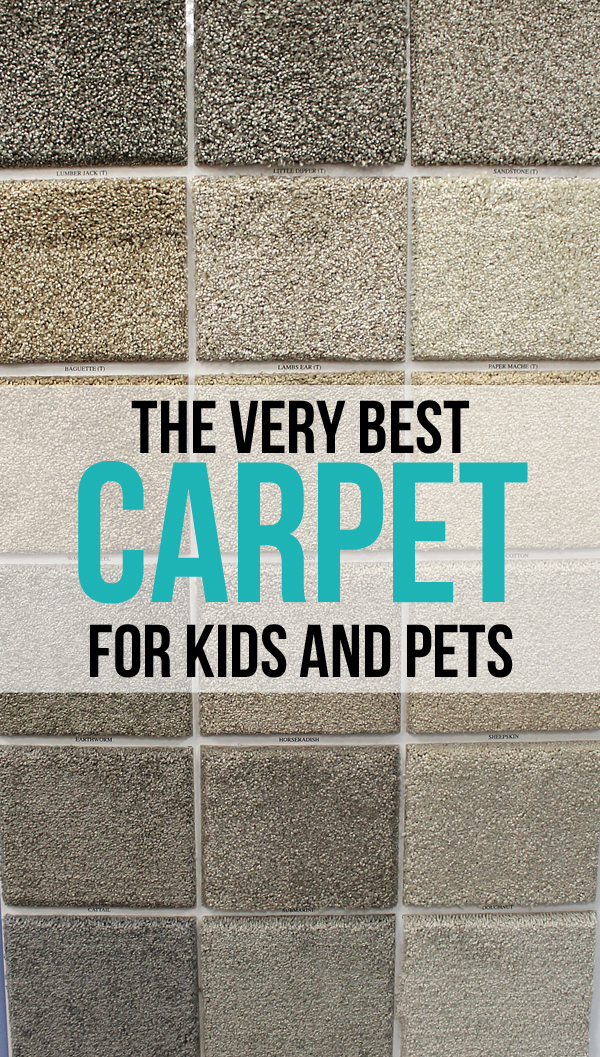 The Very Best Carpet For Kids And Pets Thecraftpatchblog Com