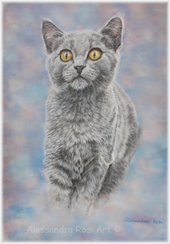 custom pet portraits - pastel portraits of cats - paintings of animals
