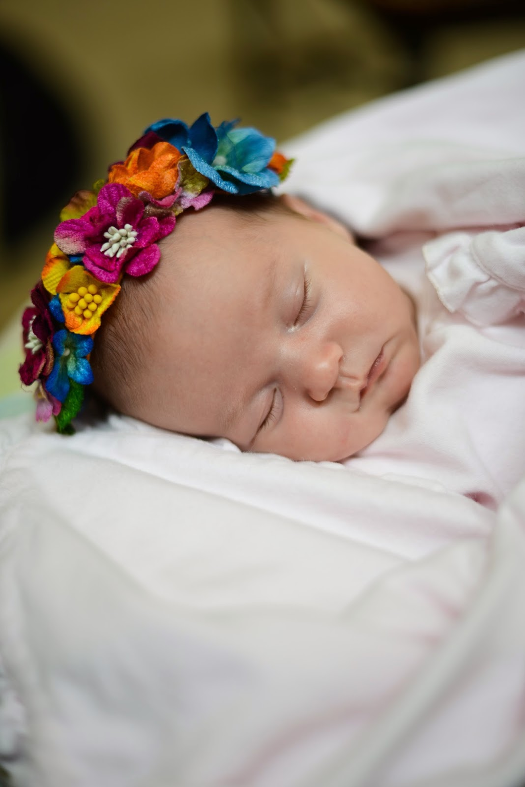 newborn baby portrait photos