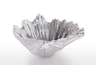 Silver Fan Shell