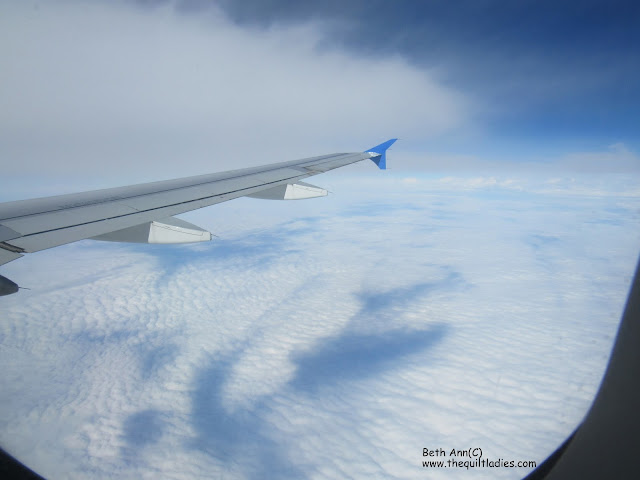 Birds Eye View From My Window Seat by Beth Ann Strub