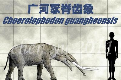 proboscidea prehistorica Choerolophodon