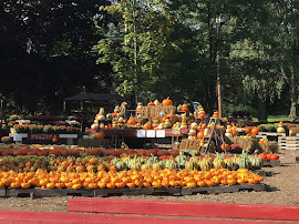 THE PUMPKIN FARM!!!!