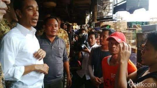 Jokowi Lepas 190 Burung
