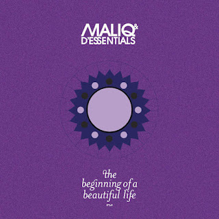 MALIQ & D'Essentials - Terlalu on iTunes