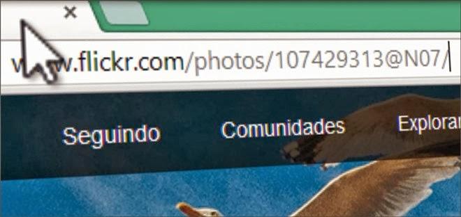 mudar endereço do flickr