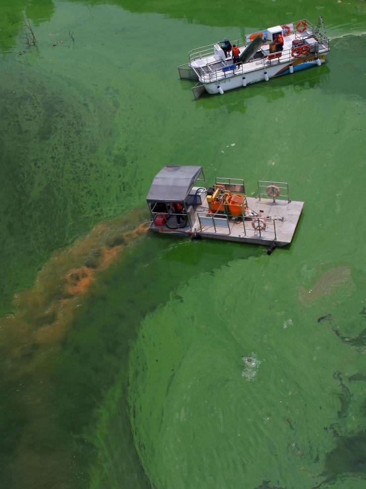 Barcos soltando coagulante contra algas verdes en un río coreano