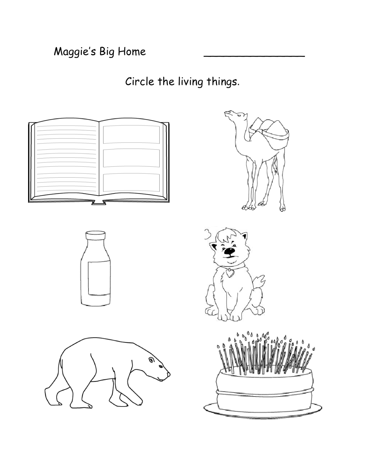 Maggies Big Home Living Things – Living Things Worksheet