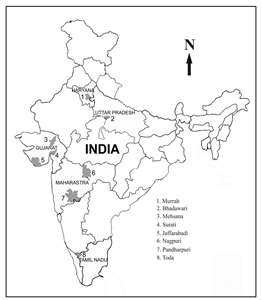 India Asia  MAPAS DE