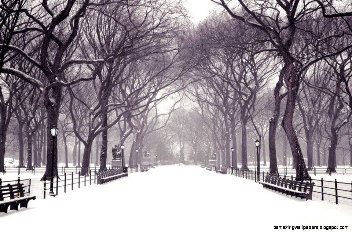Winter Backgrounds Wallpapers for PowerPoint