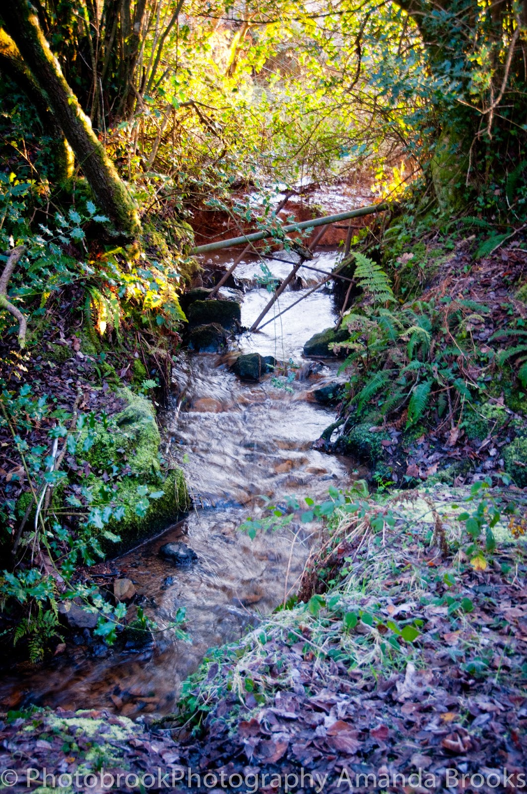 Ruthvoes stream in Cornwall