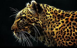 Abstract-animal-Jaguar-cheetah-wildlife-fantasy-image.jpg