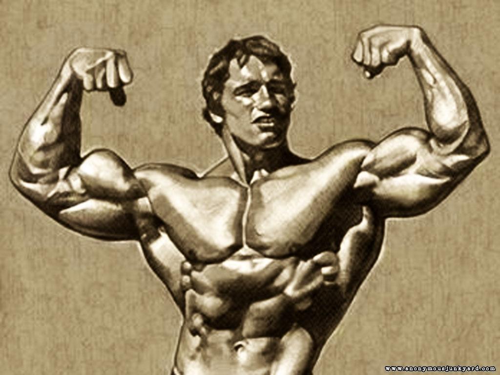 http://3.bp.blogspot.com/-b8Xd7ZJS0Q8/TkhGVAEXhUI/AAAAAAAAAYM/TobjQcMiC9A/s1600/Arnold%2BSchwarzenegger%2BBodybuilding%2BWallpaper-8.jpg