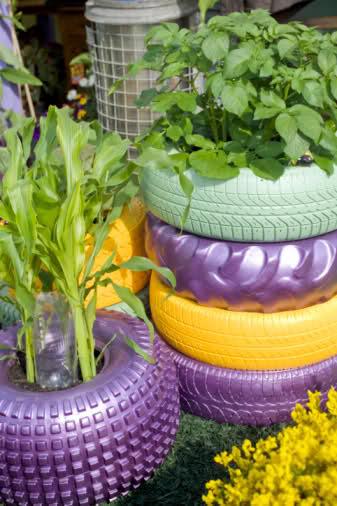 horta e jardim em pneus : horta e jardim em pneus: em sua casa, o importante é criar,inovar, reciclar por um mundo