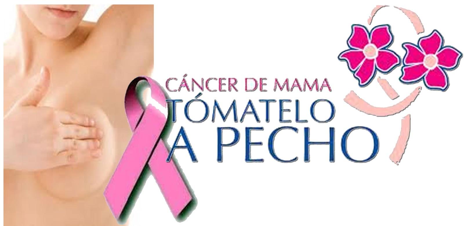 CANCER DE MAMA ¿ EVITA RIESGOS?