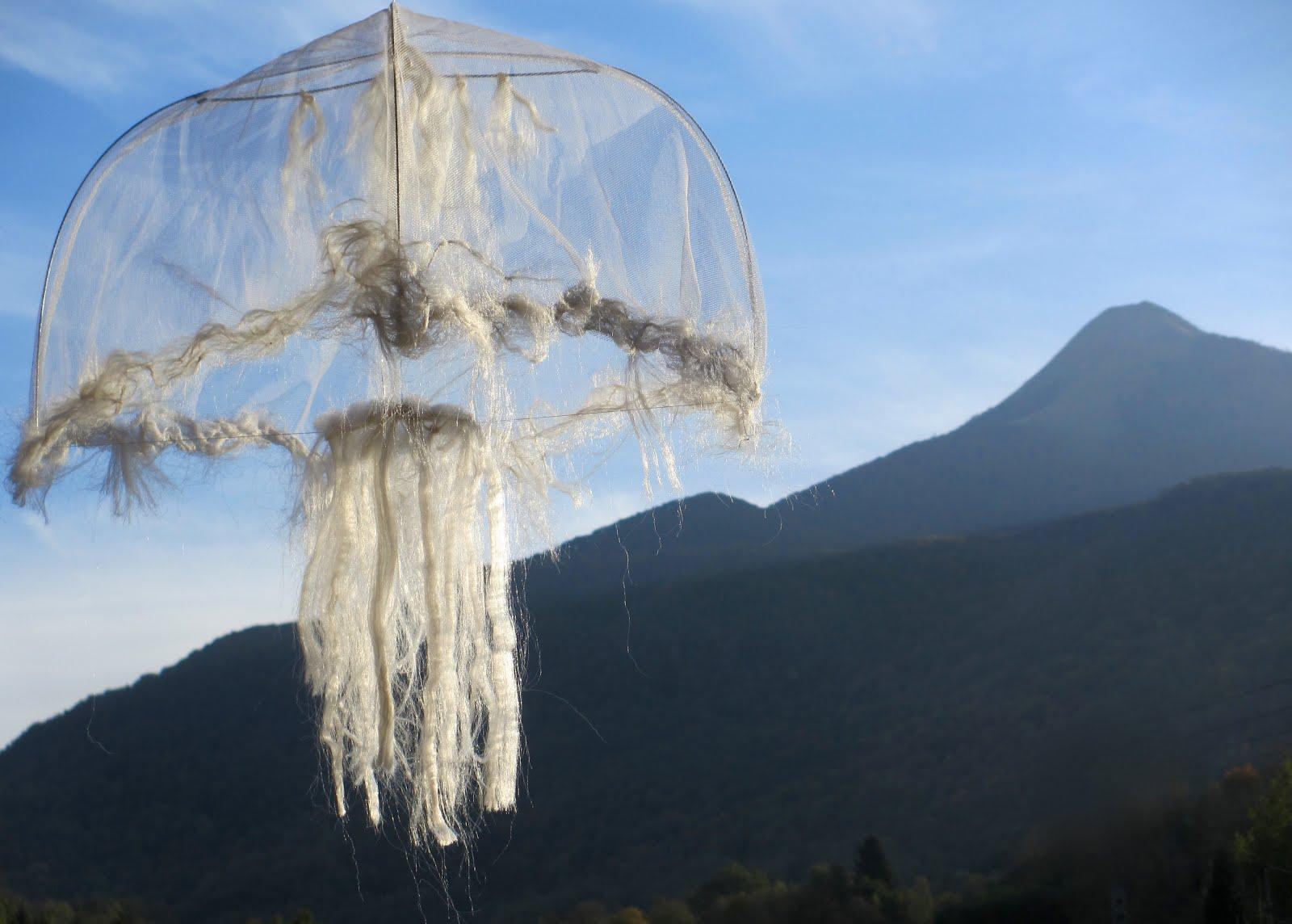 Éviter les méduses