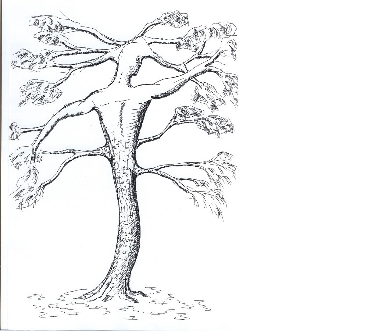Amato Miti e leggende degli alberi: i racconti di Marco Monguzzi OV99