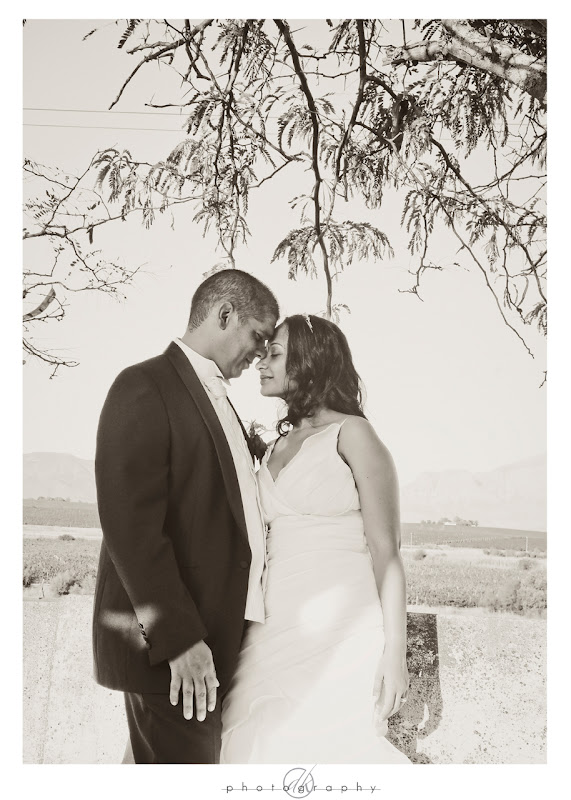 DK Photography Brwyn5 Bronwyn & Garth's Wedding in Paarl  Cape Town Wedding photographer