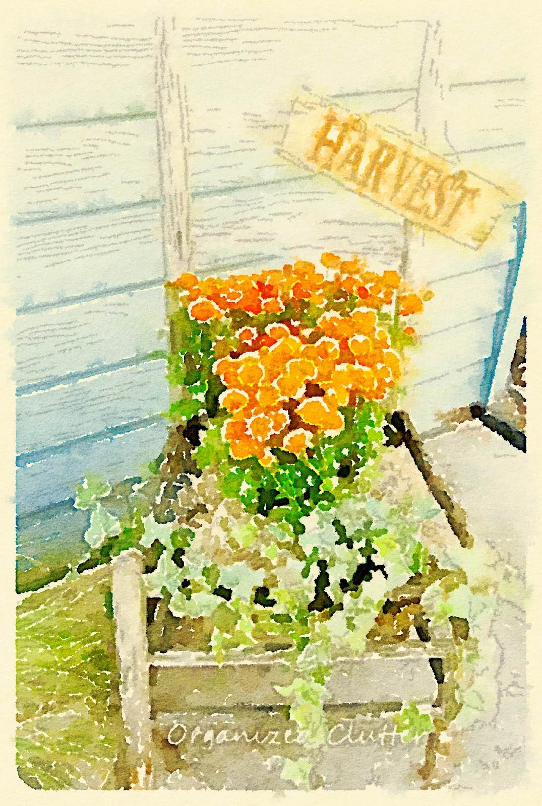 Waterlogue Fall Harvest Mum Chair www.organizedclutterqueen.blogspot.com