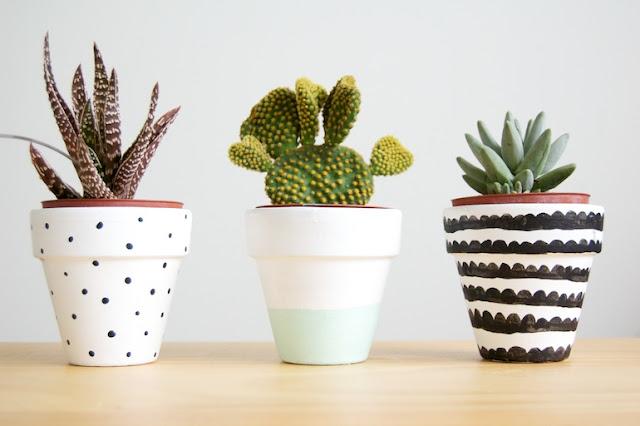 30 im genes de inspiraci n para decorar con macetas plantas for Fotos de plantas en macetas
