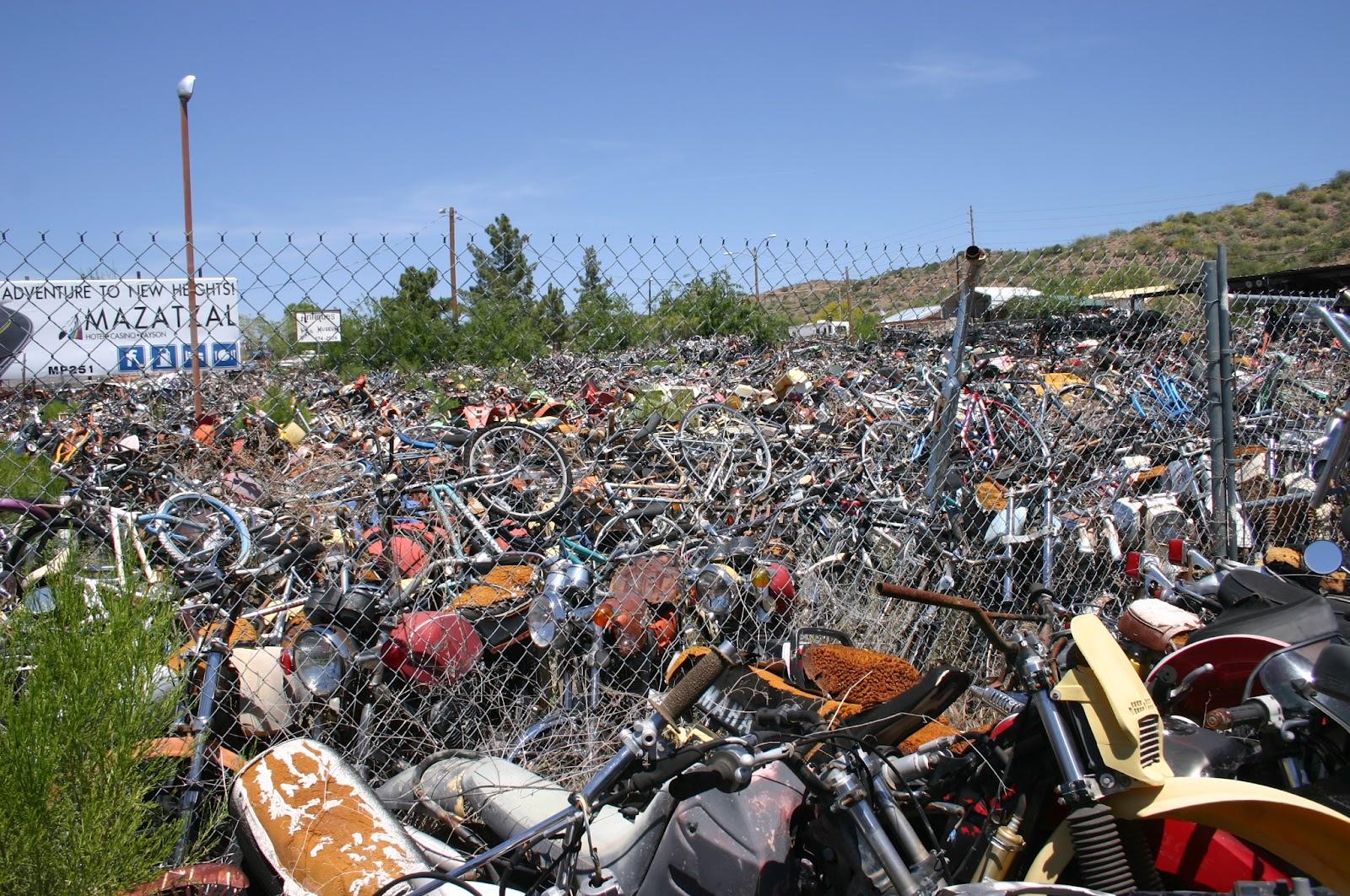 Mini Bike Junkyard : Mini bike hacks tribute to all bikes rye az possibly