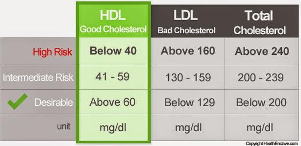 kolestrol rendah