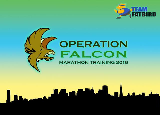OPERATION FALCON 2016: TRAINING BEGINS 16 JAN!