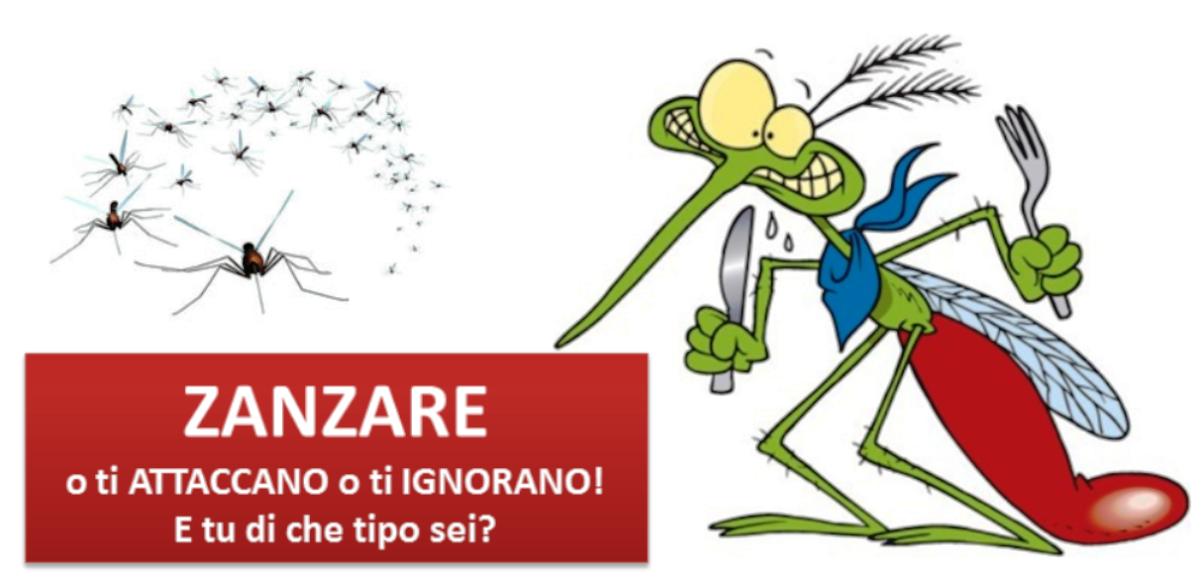 Zzzzzzz il ritorno delle zanzare - Gemelli monozigoti diversi ...