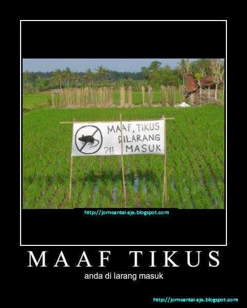 MAAF TIKUS