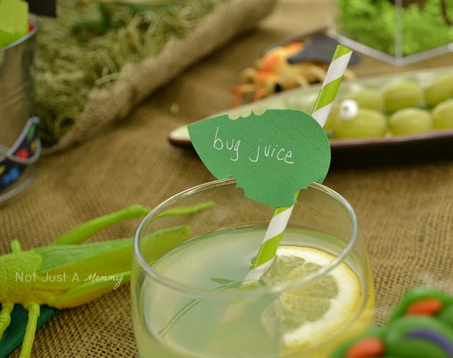 Bug Out party theme paper straw