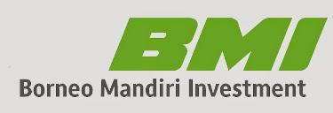 Lowongan Kerja PT Borneo Mandiri Investment Jakarta Barat