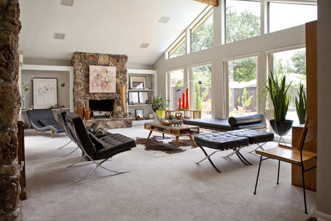Interior Design Living Room Nz