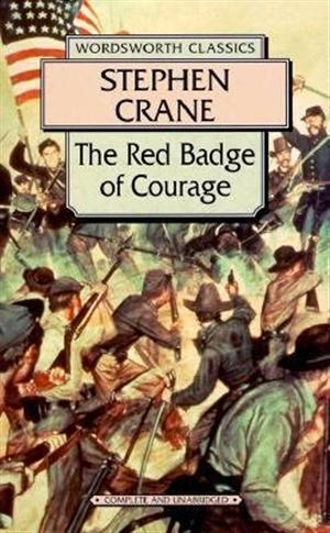 the story of henry fleming in stephen cranes the red badge When crane published the red badge of courage in 1895, his second attempt  at novel-  with his civil war story, crane became famous  the rbc focuses  only on 3 soldiers: henry fleming, jim conklin and wilson.