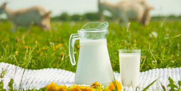 Формулы Козьего Молока от iHerb
